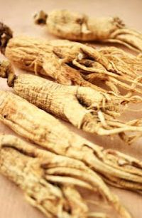 Herbs for weight loss 10 Herbs and Spices That Aid in Weight Loss