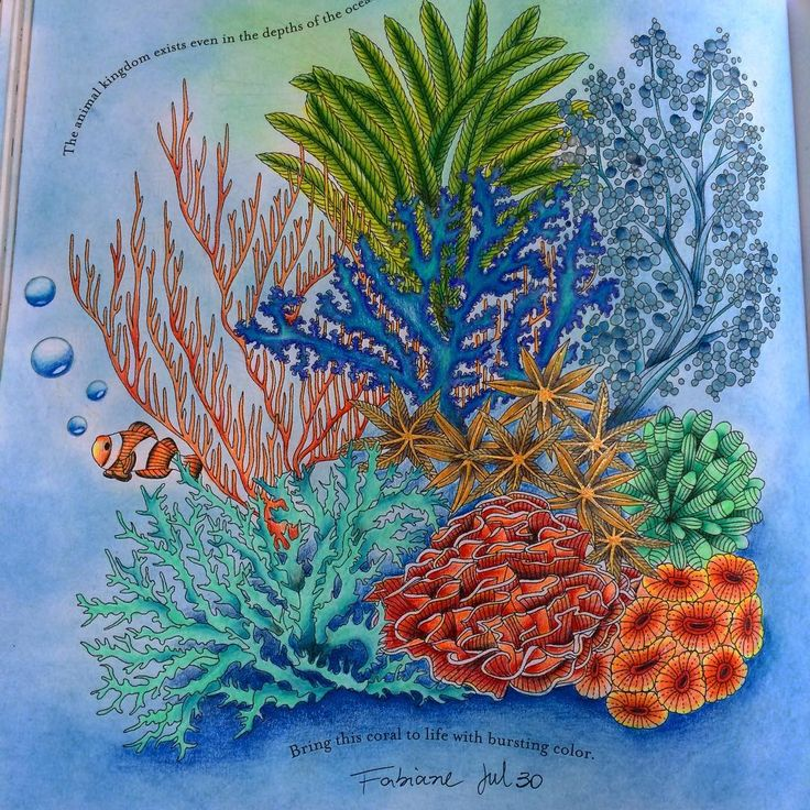 my ocean on book by milliemarotta inspirational coloring colouring reinoanimalolivro - Coloring Or Colouring