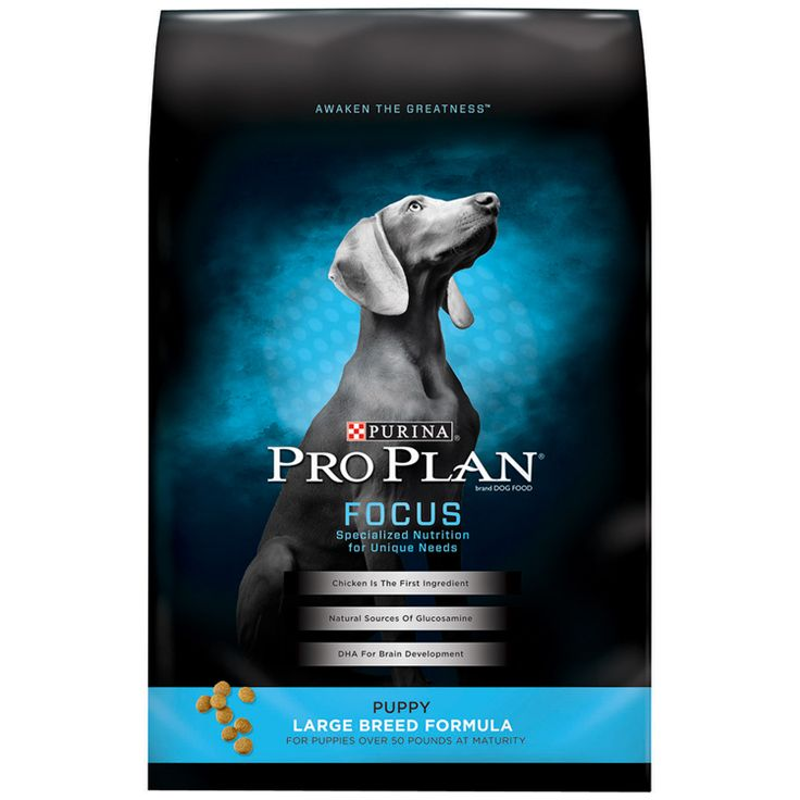 Pro Plan Focus Large Breed Puppy Food