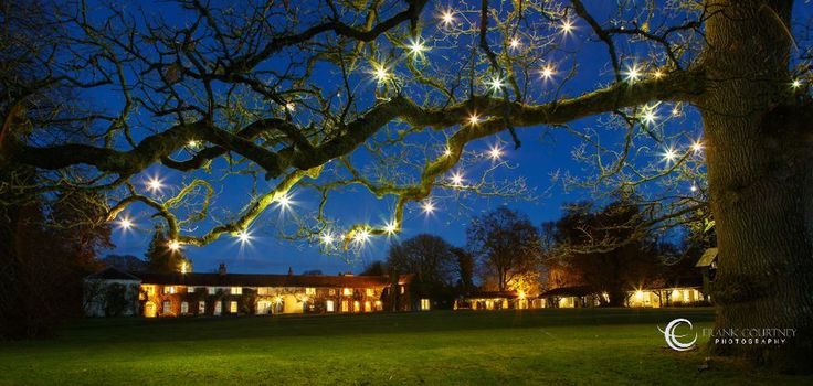 Twilight view of Rathsallagh House Hotel from under the tree (which is outlined with lightbulbs)