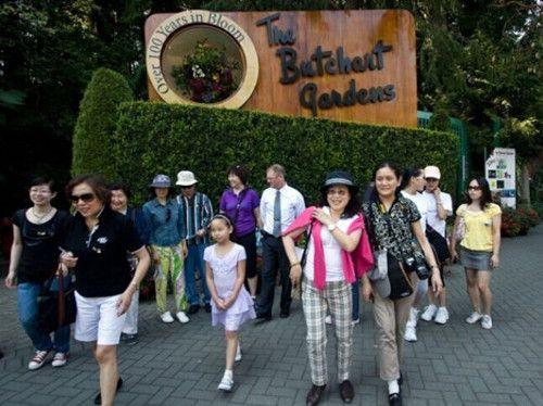 赴加中国游客5月达3.8万人 比去年同期升5.2%