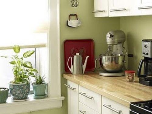 White Galley Kitchen Green Walls