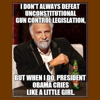 3c92c87a570f72ebce378db0581e35a7 113 best guns and 2nd amendment images on pinterest 2nd,Obama Gun Control Meme