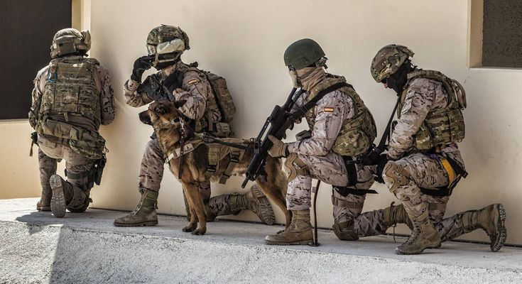 Exhibición de una fuerza de reacción rápida sobre un objetivo y de una acción de rescate de rehenes. Toda la secuencia de la operación con los efectivos y la unidad canina. Fuente: La Verdad |Fotos: AlexDominguez  Relacionado