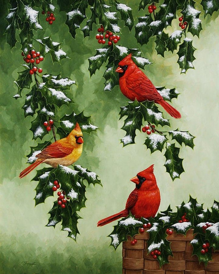 Crista Forest — Cardinals and Holly (720×900):