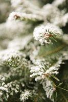 How to Make Homemade Christmas Tree Flocking thumbnail