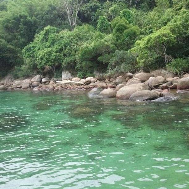 Lagoa verde. Green lagoon - Ilha Grande / RJ