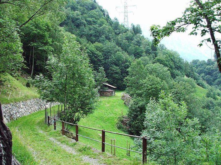 Walserweg:Sbrinz-Route: Brünigpass - Grimselpass - Griespass       - Ponte - Domodossola