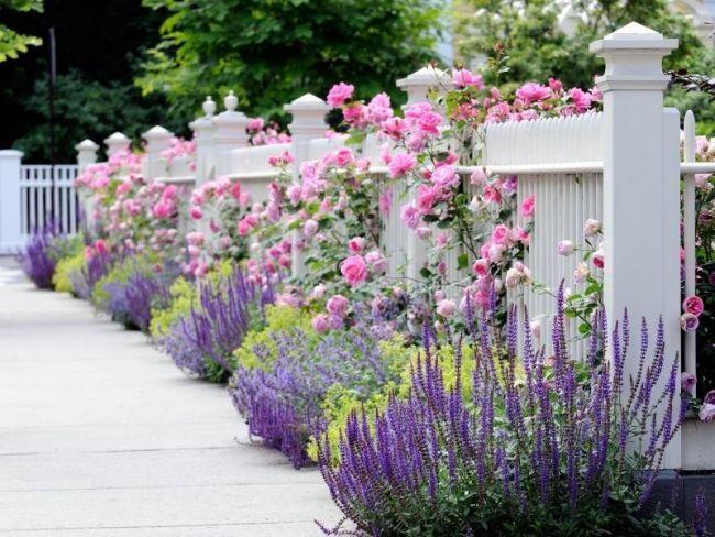 Классический деревянный забор с цветами - украшение дачи!