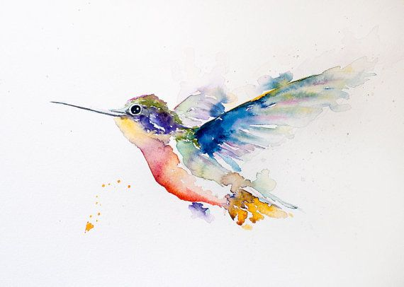 Original Water Colour Print  10x8 Humming Bird by PaulCheneyArt, $28.00