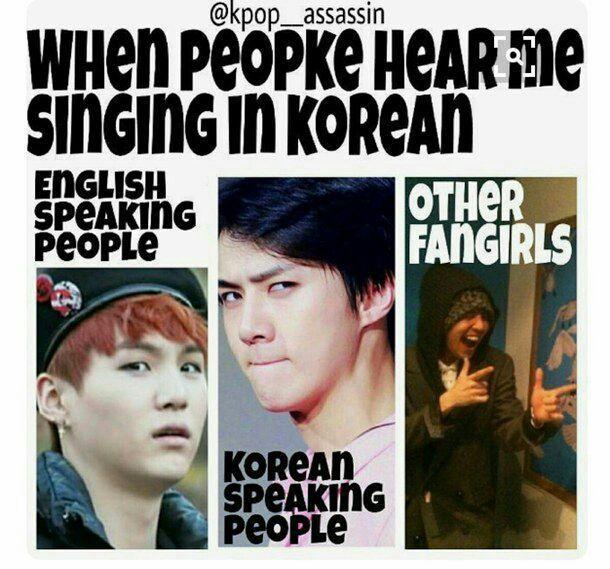 Když tě lidi slyší zpívat v korejštině Anglicky mluvící lidéKorejsky mluvící lidéOstatní fanynky