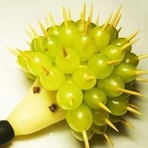 egel van peer en druif