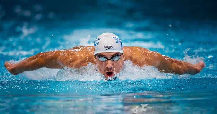 Studying the Brain of the Elite Swimmer