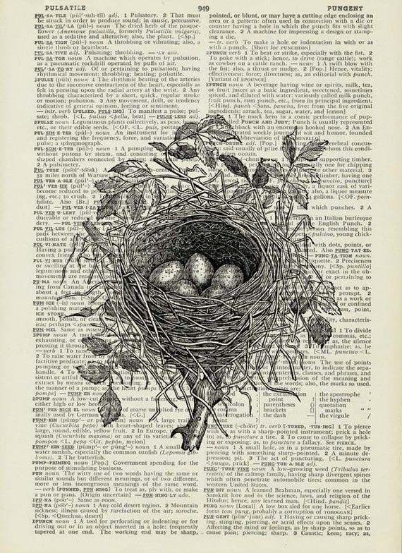 Bird's nest with eggs print