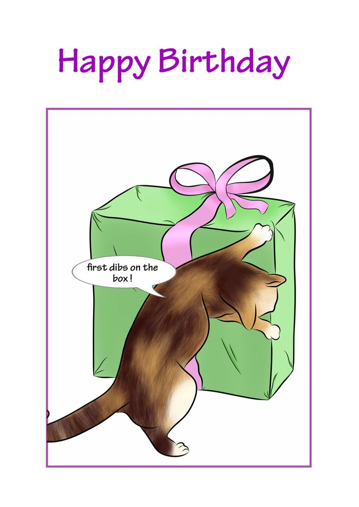 'First dibs on the ribbon'. #Cute #CatCard featuring cheeky cat Chilli