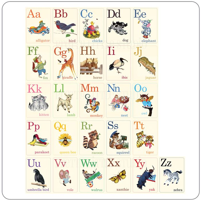 20 Alphabet Flashcard Sets For Every Style Search, Girls