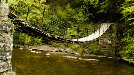 The bridge across the River Allen is a lot safer than it looks