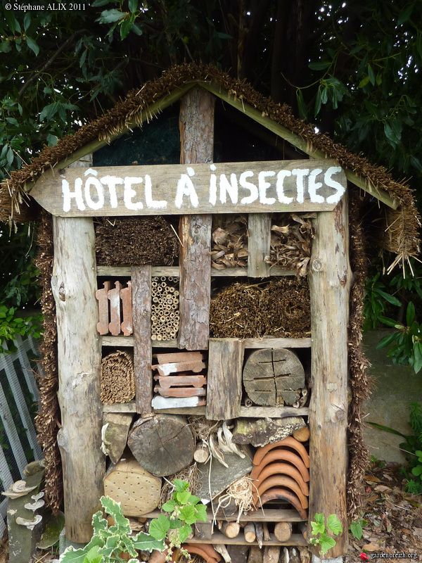 A hotel for bees.  We could use old fence boards or maybe pallets.