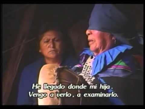 Pelontún machi medicina mapuche