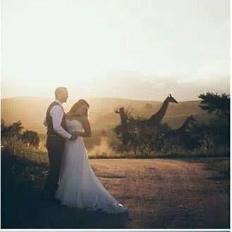 Best wedding photos with our animals in the background