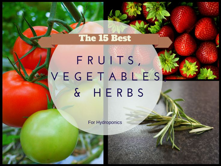 fruit and hydroponics In many countries, the crops of such systems are monocultures selectively bred for high fruit, grain, or biomass yields: hydroponics, with its various.