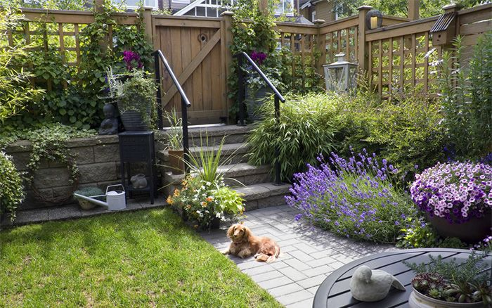 Think you can't do much with a small garden? Think again! Space is at a premium for most of us, so here are my top ten tips for garden design for small spaces.  1 Use height   Walls, garages, the side of the fence – it's