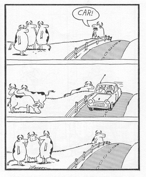 Far Side Comics Car Jokes Step On It