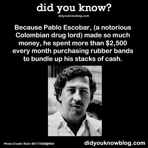 Pablo Escobar's rubber bands.