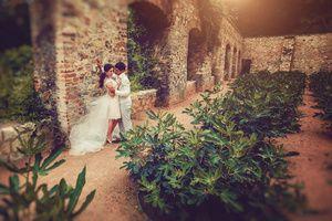 , photoprague, weddingprague, свадьба прага