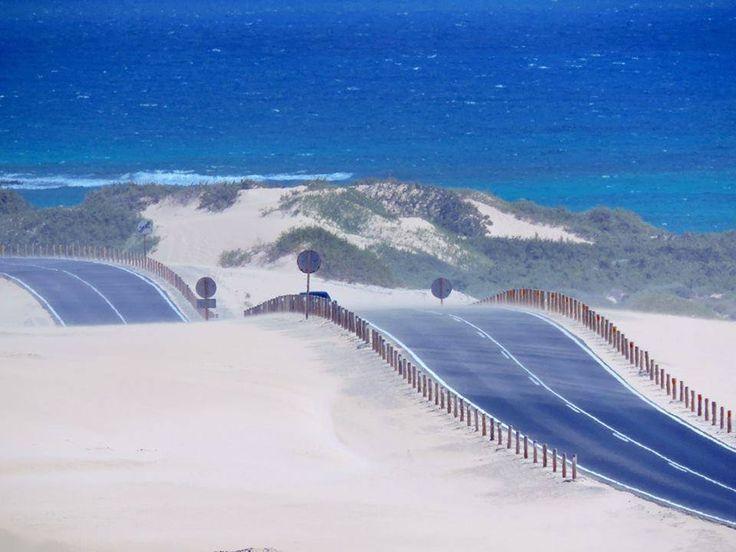 Parque Natural de las Dunas de Corralejo, Fuerteventura Rachas de viento de hasta 70 km/h estos días  Foto de Home Canarias Übersetzung anzeigen