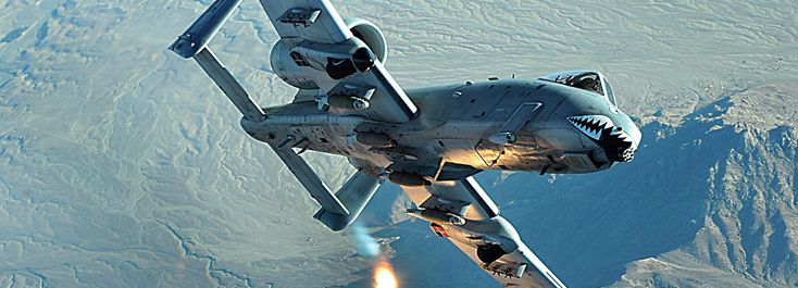 "A-10 Thunderbolt II affectionately nicknamed ""The Warthog,"""