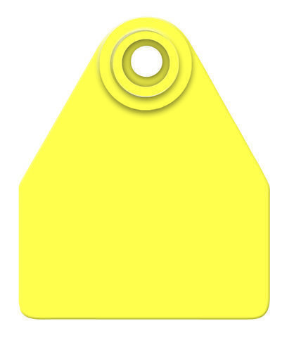 Allflex Medium Blank in bags of 25 - The Cattle Tags Store
