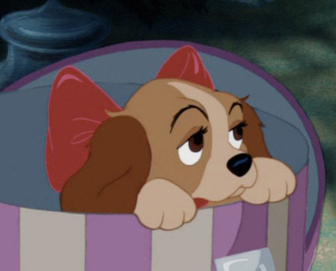 96 best Lady and the Tramp images on Pinterest | Drawings, Disney ...