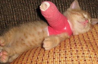 Cialis makes my legs hurt