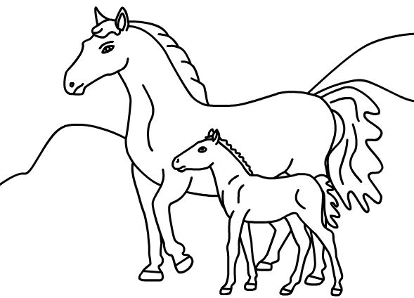 Printable Coloring Pages Horses Free Horse For
