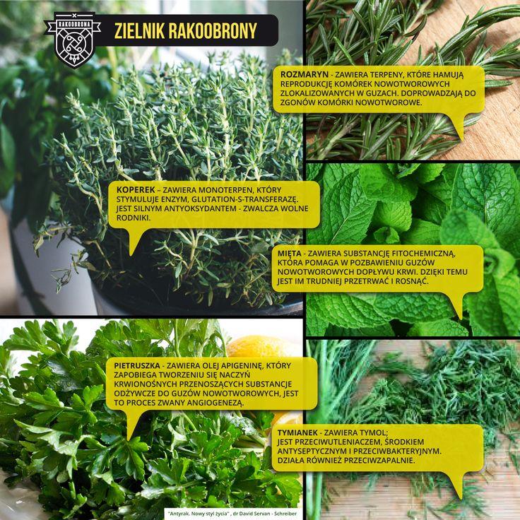 #ziołą #zdrowie #Health #herbs #Cancer #Antyrak