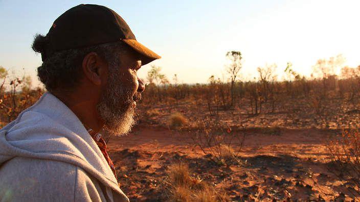 About Native Australian food : SBS Food