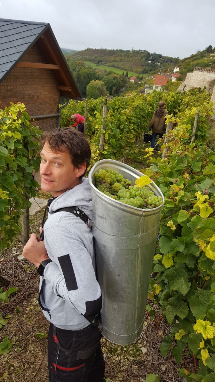 Gleich bei unserer ersten Saale-Unstrut Reise haben wir Heike und Frank Böhme kennengelernt. Das Weingut Böhme und Töchter befindet sich in Gleina, einer Gemeinde etwas nördlich der Unstrut. Wie bei vielen anderen Weingütern in der Region ist bei Familie Böhme sowohl die Freude am, als auch die Arbeit rund um den Wein spürbar – Verbunden …