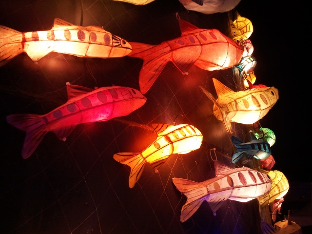 Hwacheon Mountain Trout Festival. 산천어 등불