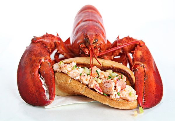 cooking live Maine lobster - Boiling. Fill a large pot approximately three-quarters full of seawater or salted water (2 T of salt per quart of water). Use about 2½ quarts of water for each lobster. Bring the water to a boil. Put in the live lobsters, one at a time, … see more - http://www.bestmainelobster.net/cooking-live-maine-lobster/