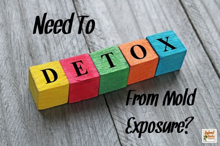 How To Detox Your Body From Mold (What I Did) Mold exposure