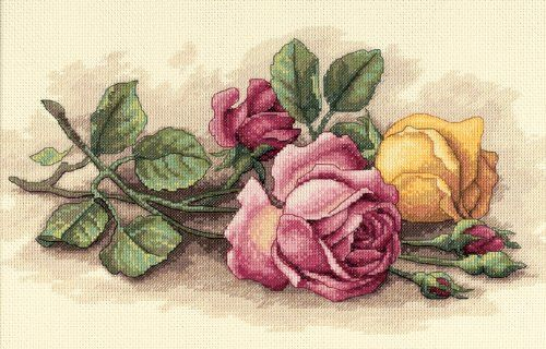 Amazon.com: Dimensions Needlecrafts Counted Cross Stitch, Rose Cuttings: Arts, Crafts & Sewing