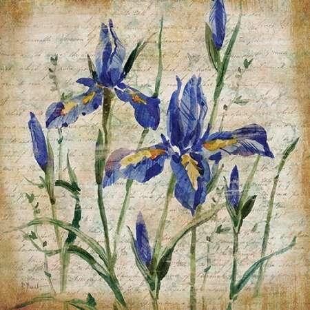Cuadro Poetic Garden IV