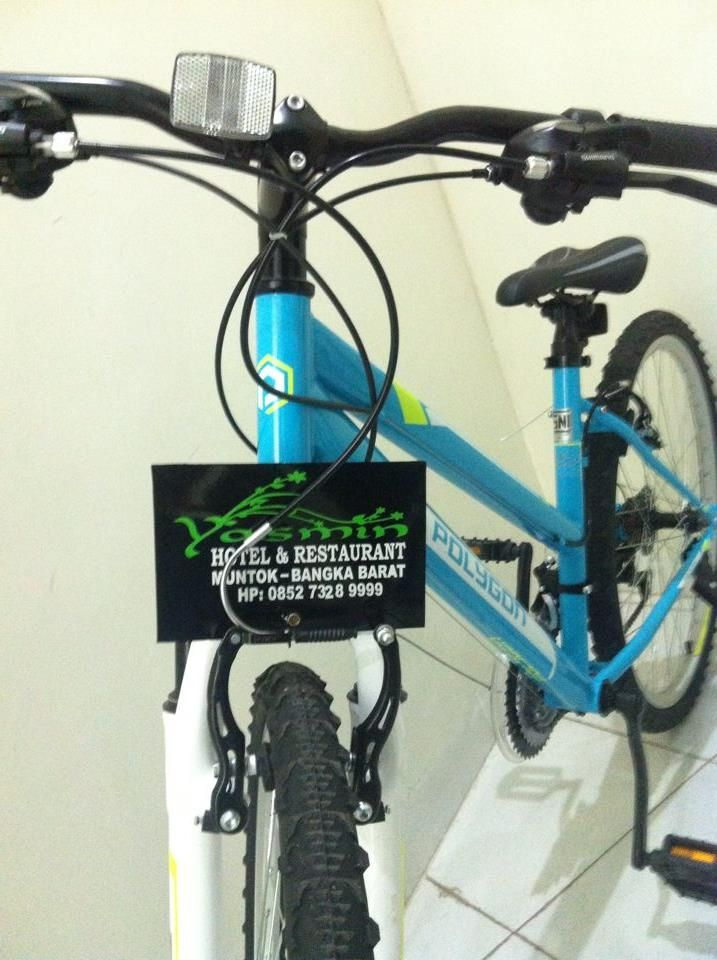 Free, Mountain Bike Rental