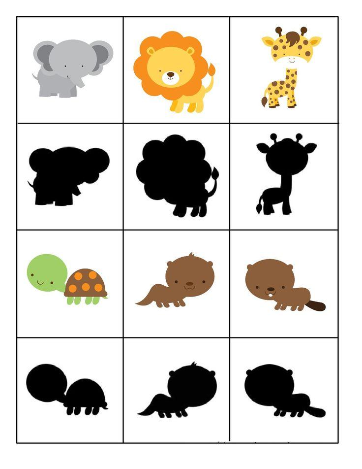 Thema dierentuin : schaduw