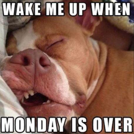 OH yes.. I need Tuesday