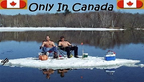 834 best ice fishing images on pinterest ice fishing for Best ice fishing sonar
