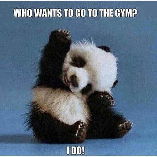 #GymHumor - Who wants to go to the gym? I DO!!!! Fitness Motivation / Fitness Blog - Follow for more!