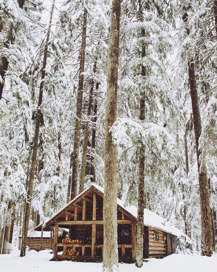 1328 Best Cabins Images On Pinterest