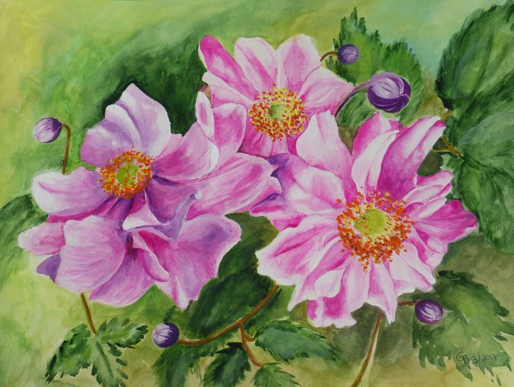 Sue's Anemone; watercolour and gouache by Gorica Bulcock
